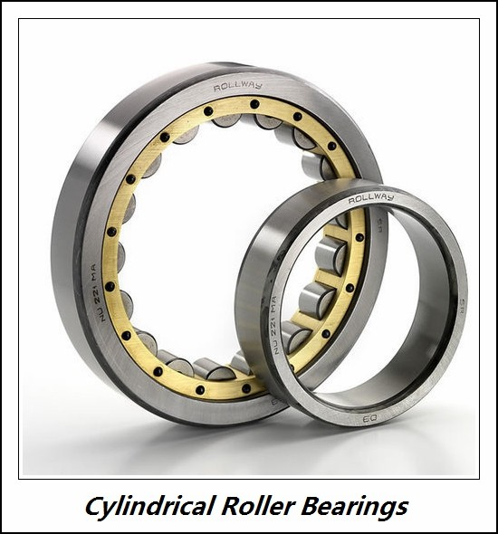 2.165 Inch | 55 Millimeter x 4.724 Inch | 120 Millimeter x 1.693 Inch | 43 Millimeter  CONSOLIDATED BEARING NU-2311 M  Cylindrical Roller Bearings