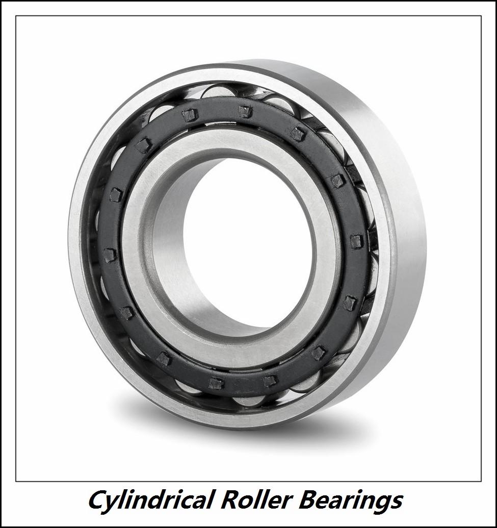 1.25 Inch | 31.75 Millimeter x 3.125 Inch | 79.375 Millimeter x 0.875 Inch | 22.225 Millimeter  RHP BEARING MMRJ1.1/4J  Cylindrical Roller Bearings