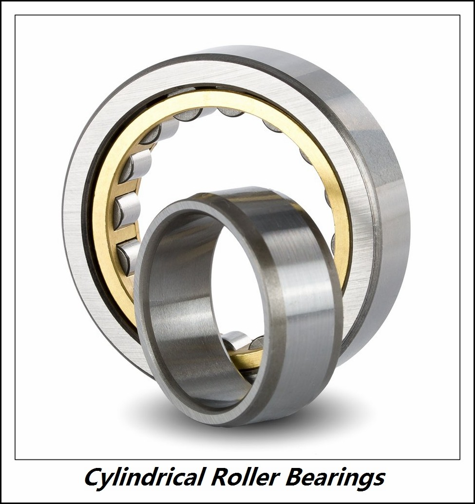 1.969 Inch | 50 Millimeter x 4.331 Inch | 110 Millimeter x 1.063 Inch | 27 Millimeter  CONSOLIDATED BEARING N-310 C/3  Cylindrical Roller Bearings