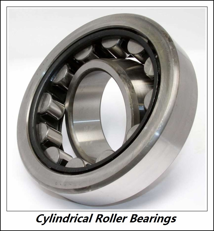 2.953 Inch | 75 Millimeter x 4.528 Inch | 115 Millimeter x 0.787 Inch | 20 Millimeter  CONSOLIDATED BEARING NU-1015 M C/3  Cylindrical Roller Bearings