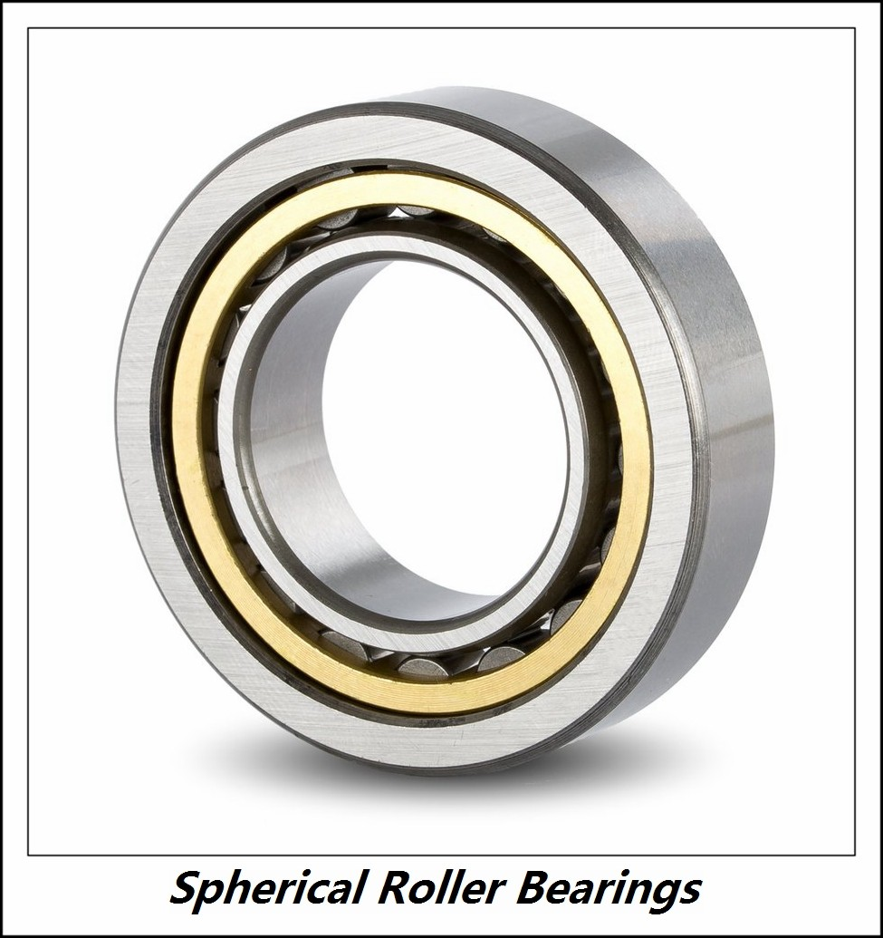 1.969 Inch | 50 Millimeter x 4.331 Inch | 110 Millimeter x 1.575 Inch | 40 Millimeter  CONSOLIDATED BEARING 22310 M F80 C/4  Spherical Roller Bearings