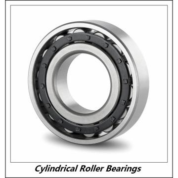 1.969 Inch | 50 Millimeter x 4.331 Inch | 110 Millimeter x 1.575 Inch | 40 Millimeter  CONSOLIDATED BEARING NU-2310E M  Cylindrical Roller Bearings