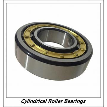 2.362 Inch | 60 Millimeter x 4.331 Inch | 110 Millimeter x 0.866 Inch | 22 Millimeter  CONSOLIDATED BEARING NJ-212 W/23  Cylindrical Roller Bearings