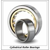 3.346 Inch | 85 Millimeter x 7.087 Inch | 180 Millimeter x 1.614 Inch | 41 Millimeter  CONSOLIDATED BEARING NU-317 M C/3  Cylindrical Roller Bearings